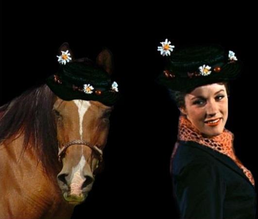 Mare-y Poppins